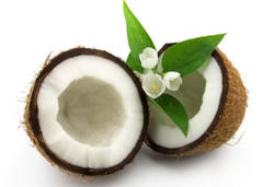coconut, oil, antiviral, herpes, lauric, acid